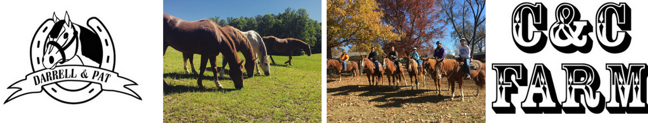 Horseback Riding near Raleigh, NC 919-496-4201